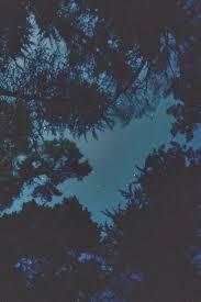 night grunge wallpaper background beautiful dark sky stars trees nature