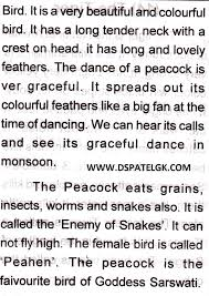 std english essay the bird peacock