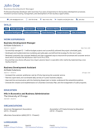 Effective Resume Templates 24 Professional Resume Templates As They Should Be [24] 13