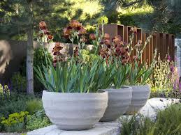 Nice Large Patio Planters Residence Design Pictures 10 Ideas For Using Large  Garden Containers Landscaping Ideas And