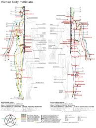 Leg Acupressure Points Chart List Of Acupuncture Points Wikipedia