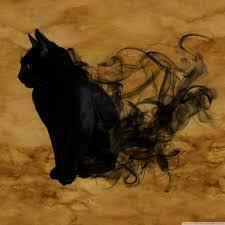 Halloween Black Cat Ultra HD Desktop ...