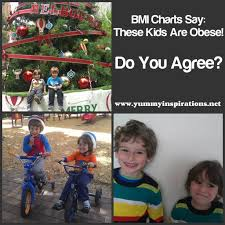 Is My Child Obese Chart Bmi Charts Say My Children Are Obese And Why Im Angry