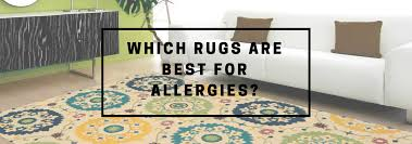 rug allergies title banner