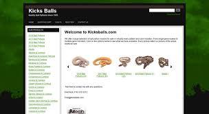 Ball Python Morph Chart Access Shop Kicksballs Com Ball Python Morphs For Sale Online