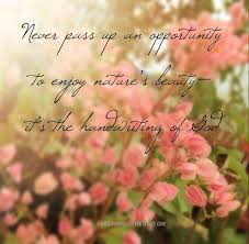 Enjoy The Beauty Of Nature Quotes Best of Quotes About Beauty In Nature 24 Quotes
