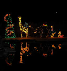 Boo Lights Hogle Zoo Discount Tickets Utah Hogle Zoo Lights
