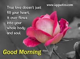 Good Morning Quotes Pictures Free Download Best Of Download Free Good Morning Quotes For Lover The Quotes Land