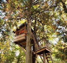 pete nelson s tree houses. Treehouse Point WA, Lodging, Pete Nelson S Tree Houses