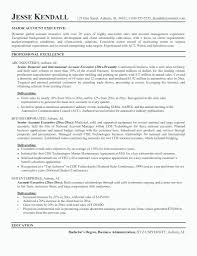 Resume Templates Sales Position Salumguilherme