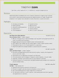 Skills And Ability Resumes 10 Skills And Ability Examples Resume Samples