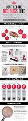 Best 25 Bed bug report ideas on Pinterest