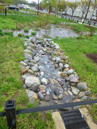 Small Picture Street Side Rain Garden Concept Sustainable Design Pinterest