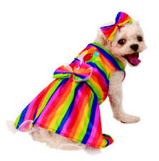 Details About Rainbow Female Pet Bright Party Dress Halloween Costume