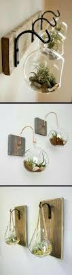 succulent plants decor ideas   Plant decor, Elegant home decor, Hanging  terrarium