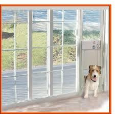 adorable electronic pet door for perfect sliding glass patio doors doggie door for sliding glass door