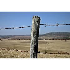 Barbed wire fence cattle Gate Framed Art For Your Wall Barbed Wire Fence Fence Cattle Consecrate Post 10x13 Frame Walmartcom Art Prints For Sale Paintingandframecom Framed Art For Your Wall Barbed Wire Fence Fence Cattle Consecrate
