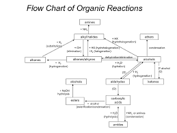 Organic Chemistry Flow Chart Imgur