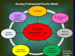 Professionalism In Nursing Professional Standards Of Practice And Performance