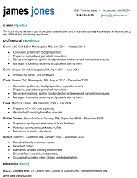 Proffesional Resume Resume Cv