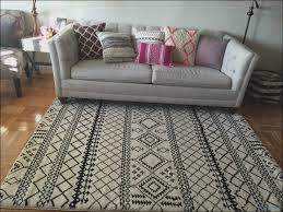 awesome target outdoor area rugs