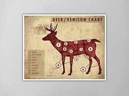 Deer Butcher Chart Amazon Com Deer Venison Meat Chart Art Print Rustic Meat