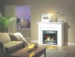 gas fireplace pilot light on but wont start gas fireplace pilot light out regency fireplace pilot light out ideas gas fireplace pilot lights but gas
