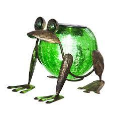 Amazoncom  Evergreen Enterprises EG2SP3912 Quirky Solar Frog Solar Frog Lights