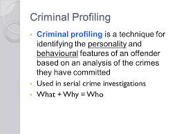 chapter criminal profiling questions from my last lecture youth 6 criminal profiling