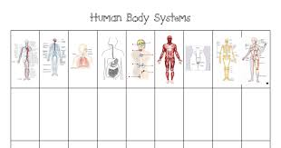 Human Body Systems Chart Pdf Im Adapting This Chart To Use