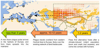 Bubonic Plague Chart Plague Outbreaks That Ravaged Europe For Centuries Were