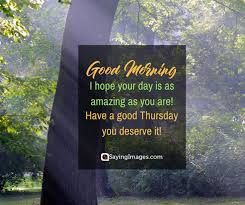 Thursday Morning Quotes Impressive 48 Thursday Quotes To Fill Your Day With Positive Thoughts