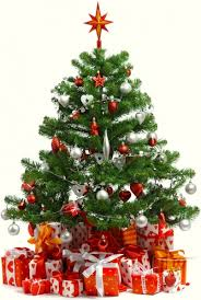 Beautiful Christmas Tree 6 Hd Picture Free Stock Photos In Image