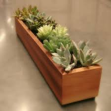 terrarium design wooden indoor planters tall indoor planters wood planter design