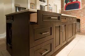 Kitchen Design Remodel Capital Hill DC