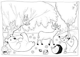 Forest Coloring Sheets Forest Animal Coloring Page Enchanted Forest