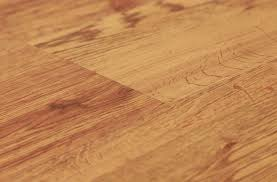 shaw sumter plus vinyl planks