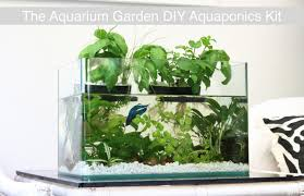 thank you to our 300 backers for ordering an aquarium garden diy aquaponics kit