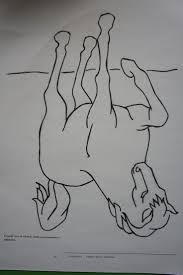 Upside Down Art 46 Best Drawing Images On Pinterest Art Lessons Drawing And