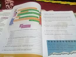 Buku bahasa inggris kelas x kurikulum 2013 kemendikbud buku guru. Jawaban Buku Bahasa Inggris Kelas 12 Halaman 6 7 K 13 Brainly Co Id