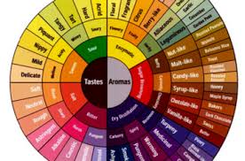 Flavor Profile Chart Coffee Flavour Characteristics By Country Michael Mac