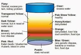 Kidney Failure Urine Color Chart Urine Trouble Some Fun Facts About Pee Catherine Haustein