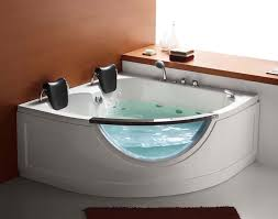 steam planet two person corner whirlpool tub cool bathtubs