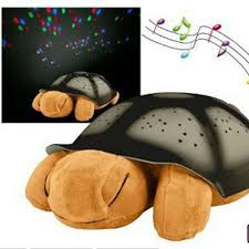 turtle night light in dubai abu dhabi fujairah ajman sharjah