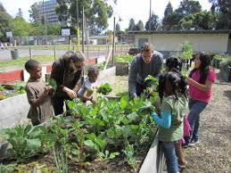 community gardening. Brilliant Gardening Thumbnail Of Mosswood Community Garden Throughout Gardening City Oakland