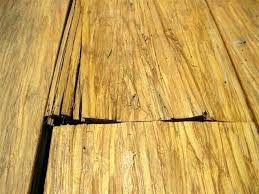 bamboo flooring cork vinyl reviews fossilized floors cali plank installation cleaning bamboo deck customer