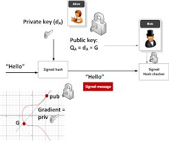 Brain wallet for bitcoin, bitcoin cash and bitcoin gold addresses with private key in wif format. The Wonderful World Of Elliptic Curve Cryptography By Prof Bill Buchanan Obe Coinmonks Medium