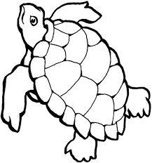 Small Picture Turtle Black And White Clipart Coloring Page coloring page