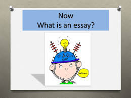 necessary to write an essay ppt 19 now what is an essay share