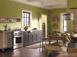 best paint for kitchen wallsGreen Kitchen Paint Colors Pictures  Ideas From HGTV  HGTV